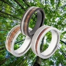 3 Rings for Men made with Natural Wood against backdrop of tall trees